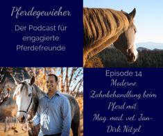 Wie läuft eine Zahnbehandlung beim Pferd eigentlich ab? Wie oft sollte ich die Zähne meines Pferdes kontrollieren lassen und warum? Die Antwort auf diese und viele weitere Fragen zum Thema Zahnbehandlungen beim Pferd findest du in dieser Episode des Pferdegewieher-Podcasts. Horses, Animals, Horse Feed, Animales, Animaux, Horse, Animal Memes, Animal, Animais