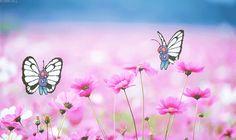 Paisajes animados con Mariposas.