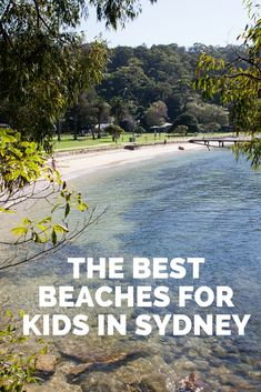 The Best Beaches For Kids In Sydney Australia