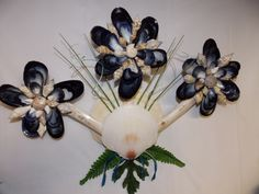 Deep Sea Scallops support flowers of Blue Mussels