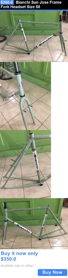 bicycle parts: Bianchi San Jose Frame Fork Headset Size 58 BUY IT NOW ONLY: $350.0