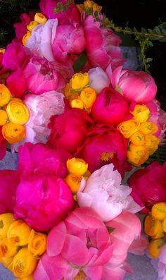 Peonies and Ranunculus...my FAV!