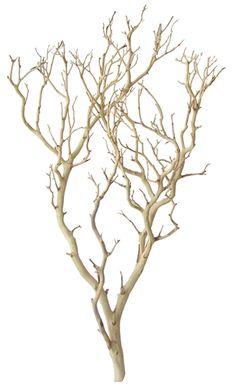 sandblasted manzanita branch from  Bloomsandbranches.com