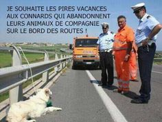 Bientôt ... mais pour qui ? Dog Training Courses, Best Dog Training, Brain Training, Image Fun, Stop Animal Cruelty, Can't Stop Laughing, Faith In Humanity, Animal Rescue, My Friend