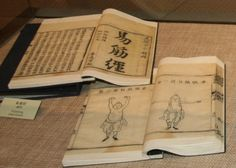 one of the most popular martial guides on martial art. ---> Jiao Long stole a secret and powerful one from her teacher. The guide was originally from the senior of Li Mu Bai's teacher.