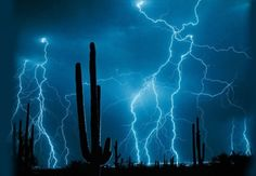 Cool pictures of lightning. Cool pictures of lightning mcqueen. Cool pictures of lightning. All Nature, Science And Nature, Amazing Nature, Looks Dark, Wild Weather, Weather Storm, Severe Weather, Thunder And Lightning, Mother Nature