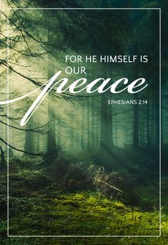 Ephesians 2:14 For he is our peace, who hath made both one, and hath broken down the middle wall of partition between us;