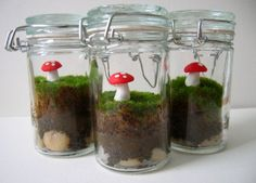 Gnome homes - tiny terrariums .. would be cute with a small gnome inside