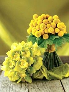 Flaunt Your Fabulous Bouquet-In front, a gorgeous bouquet of cymbidium is adorned with green silk ribbon and bead clusters. Behind, the unusual spherical blooms of craspedia create a sleek, modern bouquet. Yellow Wedding Flower Arrangements, Yellow Wedding Flowers, Yellow Flowers, Wedding Colors, Yellow Weddings, Wedding Ideas, Fall Flowers, Floral Arrangements, Wedding Styles