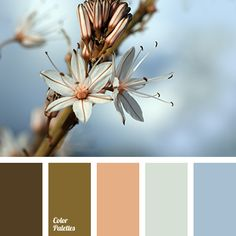 Color Palette #3359