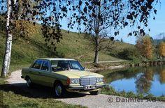 78F66 Mercedes-Benz Limousine der Baureihe 123