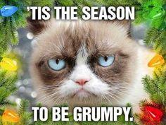 Grumpy Cat Christmas