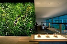 Vertical gardens are not strictly for outdoor settings.  Check out this unique interior garden wall that can be found in downtown Dubai.