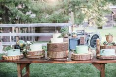 A woodsy cake table with log slice cake plates