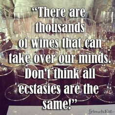 """There are thousands of wine that can take over our minds. Don't think all ecstasies are the same!"""