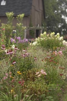 Eco Friendly Garden Ideas Pin by robin davis on in the garden pinterest garden ideas plant more native plants to support your local ecosystem living the country life workwithnaturefo