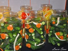 Castraveti murati Pickels, Romanian Food, Winter Food, Celery, Goodies, Stuffed Peppers, Vegetables, Cooking, Travel