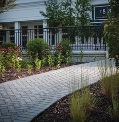 With its simple shape and utilitarian appeal, Holland Stone pavers are a paving stone for a variety of residential and commercial installations. Legacy Collection, Paving Stones, Driveways, Simple Shapes, Newport Beach, Landscaping Ideas, Pools, Holland, Ash