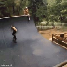 Cachorro anti-manobra