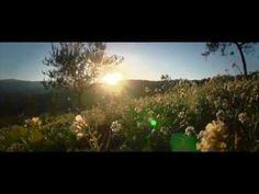 Explore the beauty of Umbria