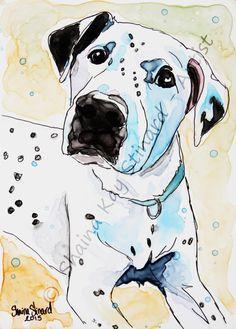CUSTOM WATERCOLOR PAINTINGS / YUPO PAPER / MIXED MEDIA SKETCH / PORTRAITS / PETS / DOGS / rescued pets by Shaina Kay Stinard - Artist    www.shainastinardartist.com   Making your photos a work of art!   'Patrick' - 5 x 7 mixed media sketch on YUPO paper  #SecondChances  #artbook #Kickstarter