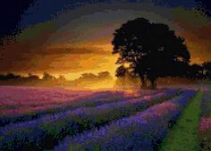 Provence France Lavender Field Sunset Cross Stitch pattern PDF