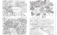 Drawn to Garden Coloring Book