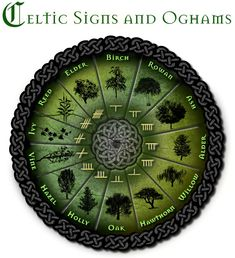 Celtic druid tree astrology and zodiac signs. Celtic Signs, Celtic Symbols, Celtic Knots, Celtic Meaning, Druid Symbols, Celtic Words, Irish Symbols, Celtic Tree, Irish Celtic