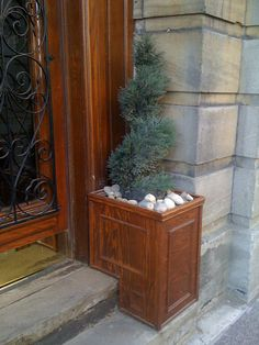 Interesting front door plants Front Door Plants, Front Door Decor, Tree Box, Garden Plants, Gardening, Doors, Landscape, Ideas, Home Decor