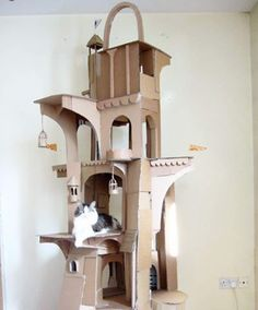 Merveilleux Man Builds Dragon Shaped Cardboard House For His Cat