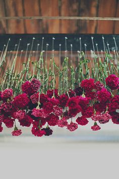 suspended magenta carnations // Interesting flower decor, and I like the marquee letters.