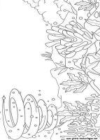 Malvorlagen Regenbogenfisch, Kostenlose Malvorlagen gratis und kostenlos Ausmalbilder