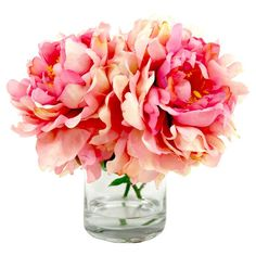 Shop Joss & Main for your Faux Cream, Pink, & Burgundy Peony. Create a lush tablescape or charming vignette with this lovely faux peony arrangement, nestled in a classic glass vase with artificial water. Peony Arrangement, Floral Arrangements, Plantar, Pink Peonies, Yellow Roses, Pink Roses, Faux Flowers, Fresh Flowers, Silk Flowers