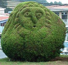Topiary at Parque Francisco Alvarado, Zarcero, Costa Rica Topiary Garden, Garden Art, Garden Tools, Garden Ideas, Garden Plants, Garden Design, Ficus, Costa Rica, Patio Trees