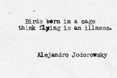 Birds born in a cage think flying is an illness-Alejandro Jodorowsky