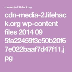 cdn-media-2.lifehack.org wp-content files 2014 09 5fa22459f3c50b20f67e022baaf7d47f11.jpg