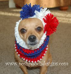 Who is Going To Win The Super Bowl? Click and See Who My Pooches Predict who will Won!  Striped Dog Snood Free Crochet pattern.