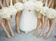 round white wedding bouquet and champagne dresses