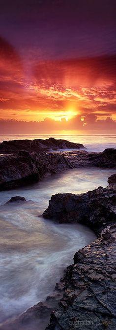 """One and Only"" by Bernie Zajac, 500px, Currumbin, Gold Coast Region of Queensland, Australia"
