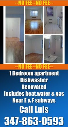 Large and Bright 1 Bedroom apartment for rent in Forest hills ...