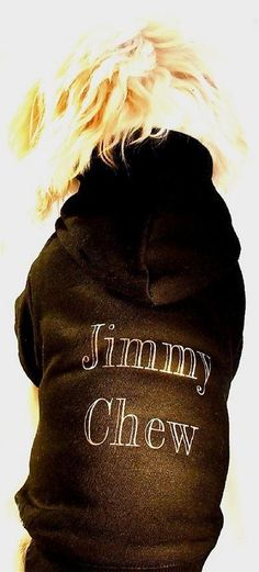 Puchi - Jimmy Chew Dog Hoodie – The Dog Demands Online Gift Store, Dog Jumpers, Dog Hoodie, Pet Accessories, Your Dog, Hoodies, Cool Stuff, Dogs, Doggies