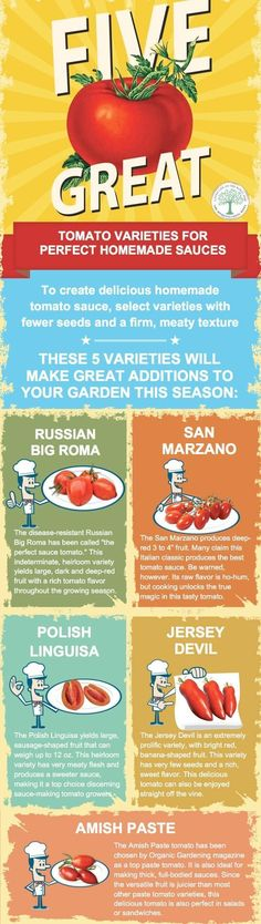 Learn to grow some great tomatoes in containers, too! thehomesteadinghi...
