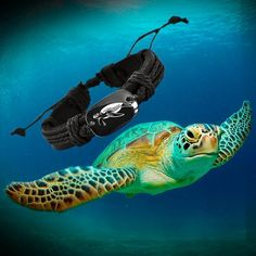 1716d3a55ca 7 Awesome I Love Turtles images | Bracelets, Sea turtles, Tortoises