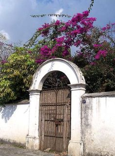 San Pedro Guatemala, Guatemala City, Tikal, Guatemalan Art, Countries In Central America, Lake Atitlan, Spanish Architecture, Cruise Destinations, Countries To Visit