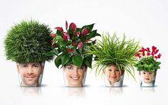 home-decorating-ideas-green-grass-12.jpg 600×377 Pixel