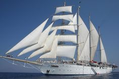Six Top Tall Ship Experiences In 2013    Valentine's Day in the Caribbean  Hold hands on a deck-top sun-lounger at midnight watching the twinkling stars in the inky sky high above, lay side by side in the bowsprit net with the waves skimming below, or spot dolphins together at dawn from the decks of a magnificent clipper. The world's largest full-rigged sailing ship, Royal Clipper, offers some of the most...  Expand this post »