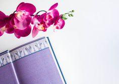 The Light Painters Loft | Book & Orchid