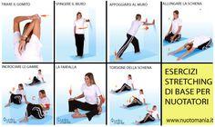 #STRETCHING #NUOTO per prevenire lesioni, lo stretching è molto importante e quando lo si fa è necessario interessare tutte le parti del corpo. LEGGI: http://bit.ly/1GiZ9jg | seguici su -> Nuotomania