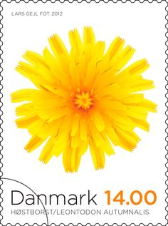 1000+ images about vi ~ STAMPS on Pinterest | Postage Stamps ...