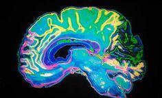 Er is een duidelijk link tussen eetbuien en dopamine. Dit artikel legt uit hoe het werkt en wat je er aan kunt doen.
